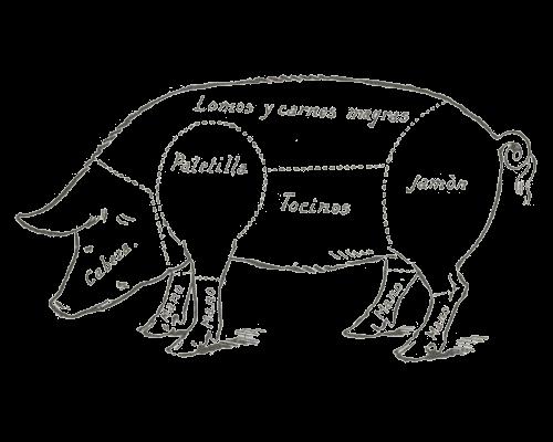 Despiece de la carne de cerdo.