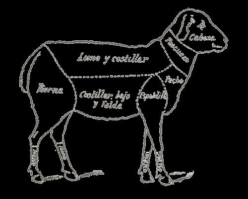 Despiece de la carne de cordero.