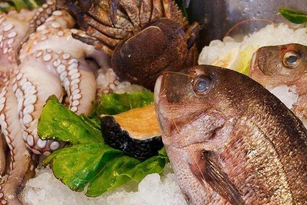 Propiedades nutricionales del pescado.